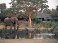 sabi sabi private game reserve 5*